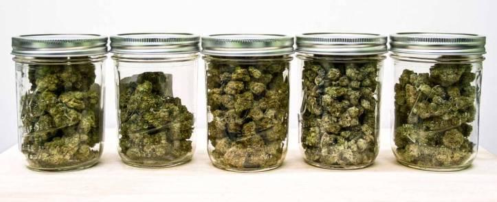 marijuana-jars